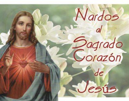 Regalale un nardo a Jesús 🌷